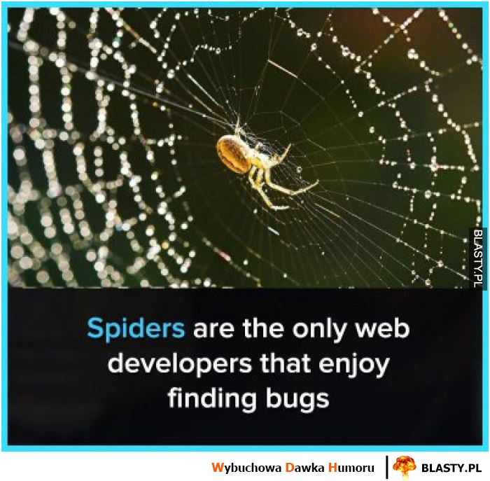 Spiders are the only web developers that enjoy findings bugs