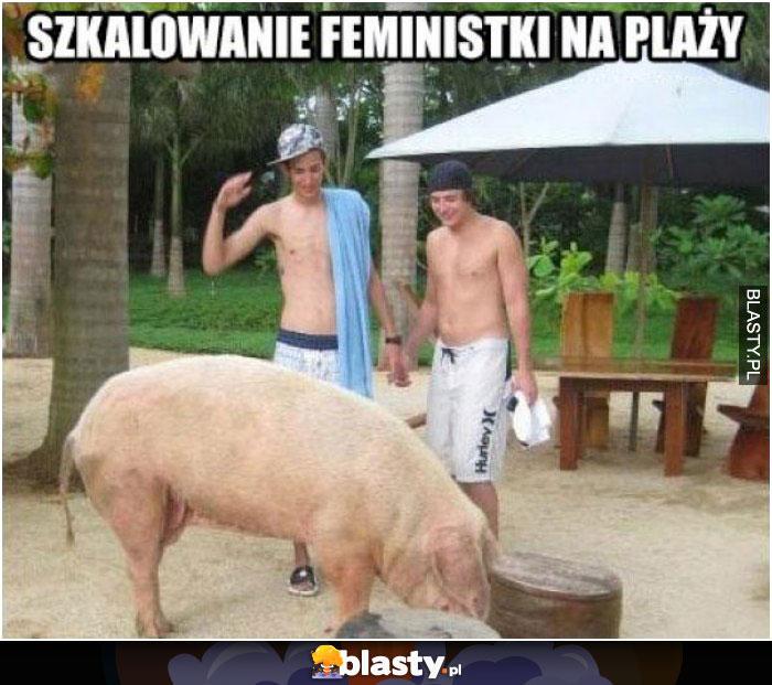 Szkalowanie feministek na plaży