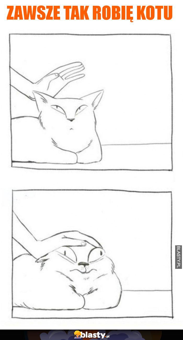 Zawsze tak robię kotu