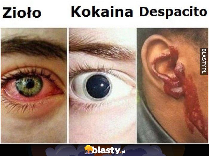 Zioło vs kokaina vs despacito