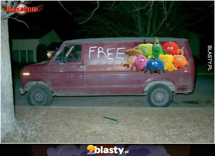 Free świeżaki
