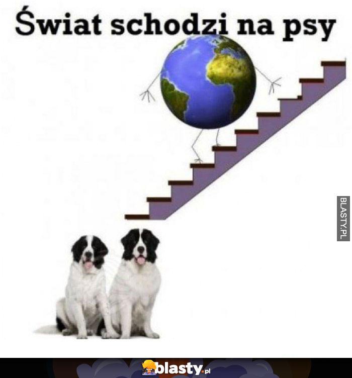 Świat schodzi na psy