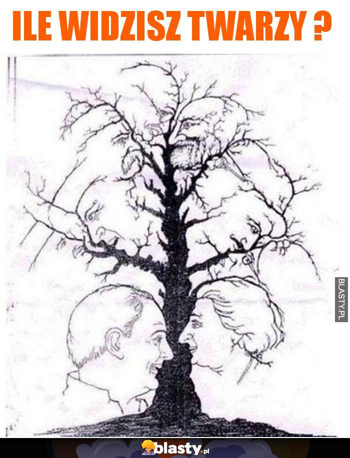 Ile widzisz twarzy ?