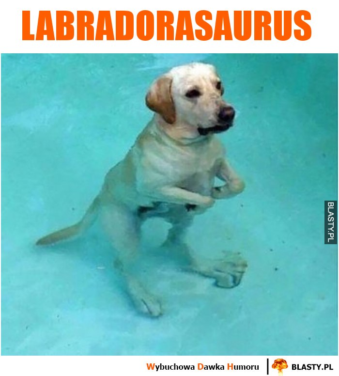 Labradorasaurus