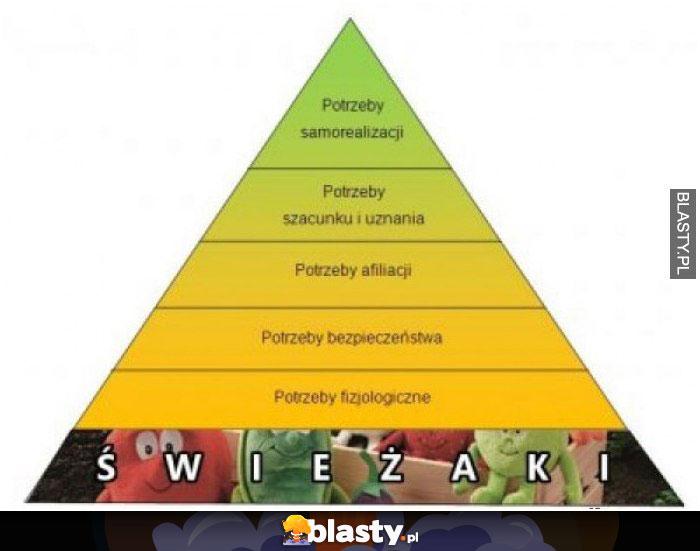 Piramida maslova