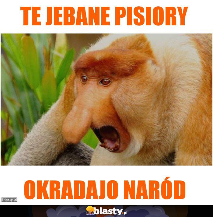 TE JEBANE PISIORY