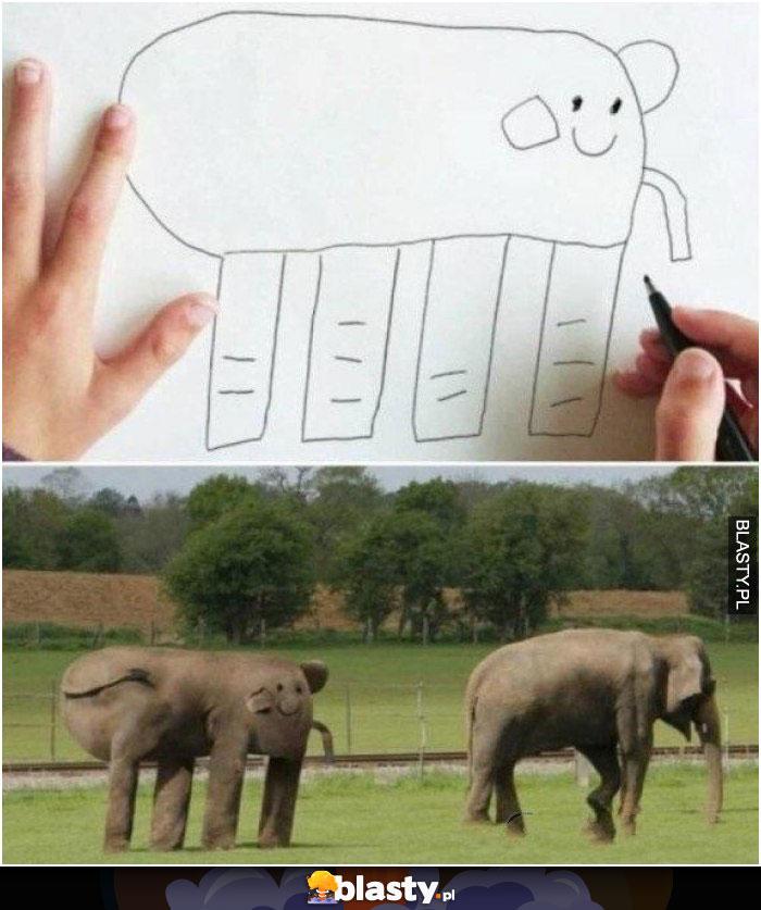 A słonia rysuje tak