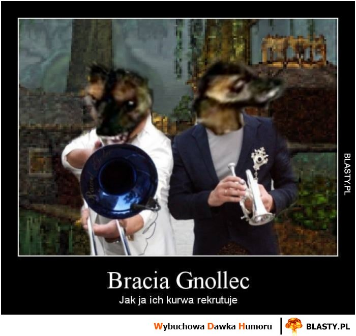 Bracia Gnollec