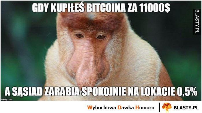 Gdy kupiłeś bitcoina za 1100 dolarów