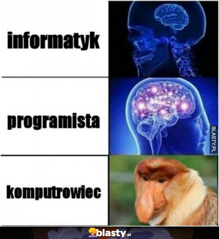 Informatyk , programista..