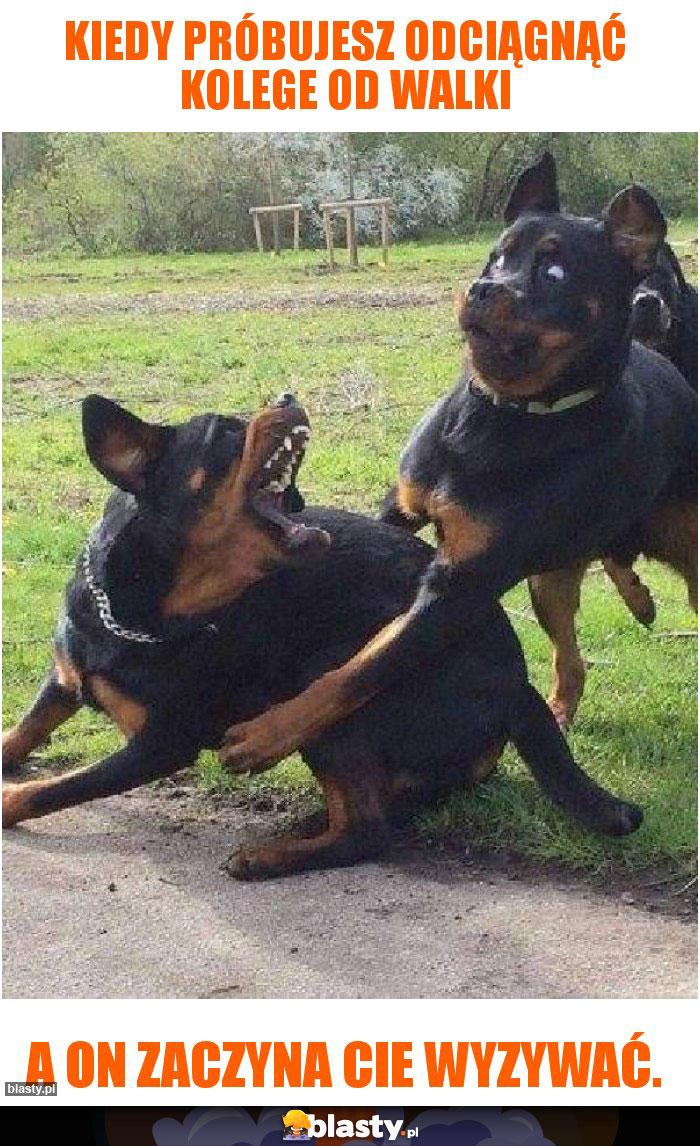 Kiedy próbujesz odciągnąć kolege od walki