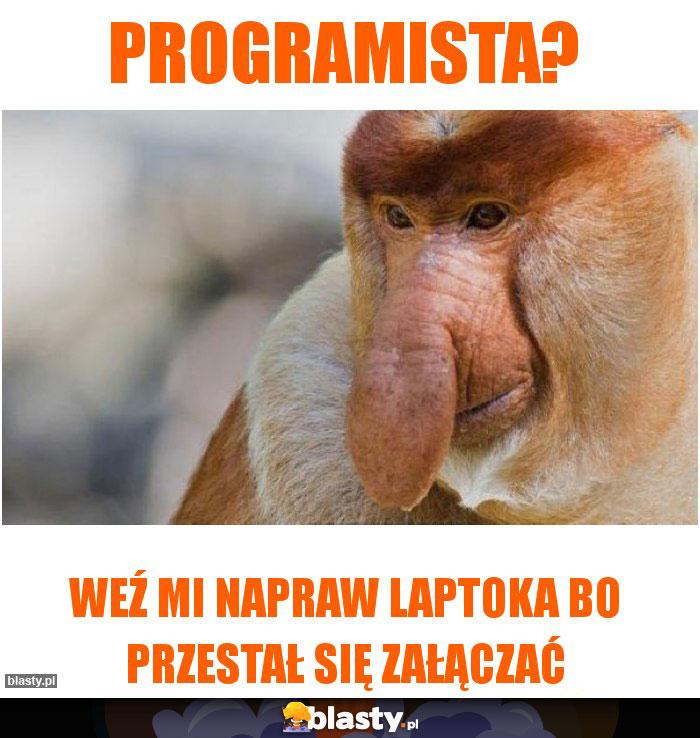 Programista?