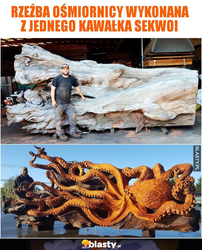 Rzeźba ośmiornicy wykonana z jednego kawałka sekwoi