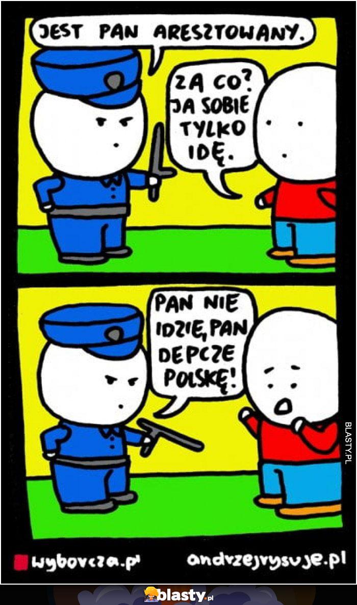 Jest Pan aresztowany