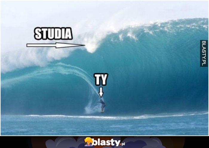Studia vs Ty
