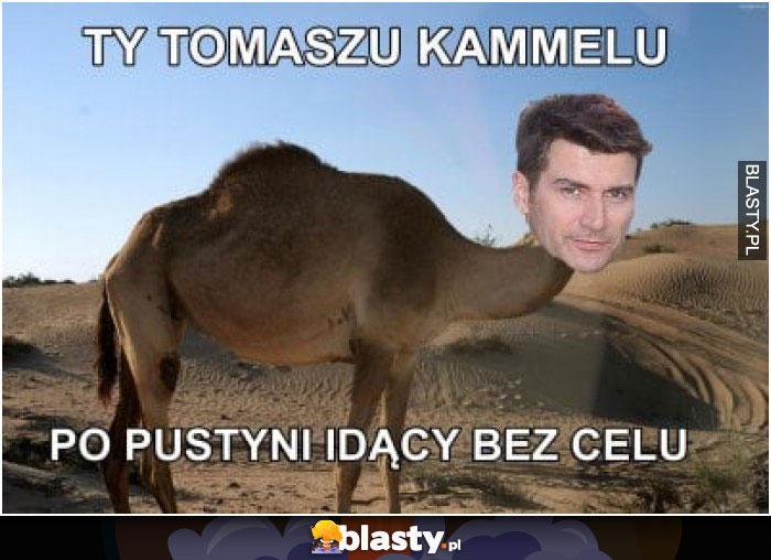 Ty Tomaszu Kamelu po pustyni idący bez celu