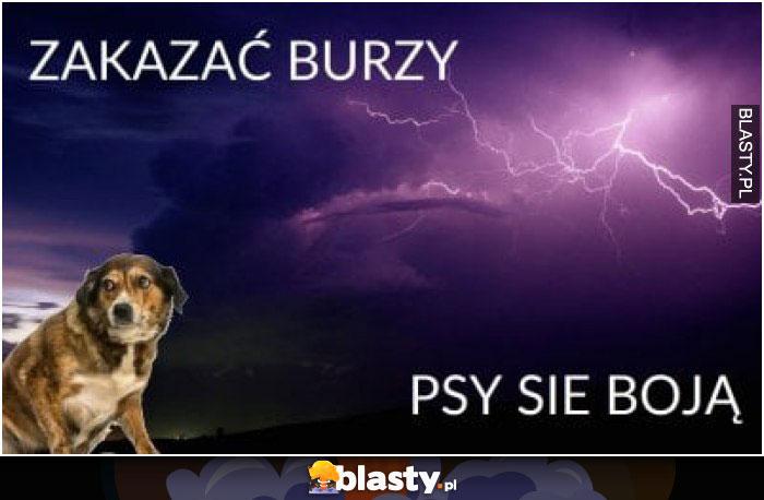 Zakazać burzy psy się boją