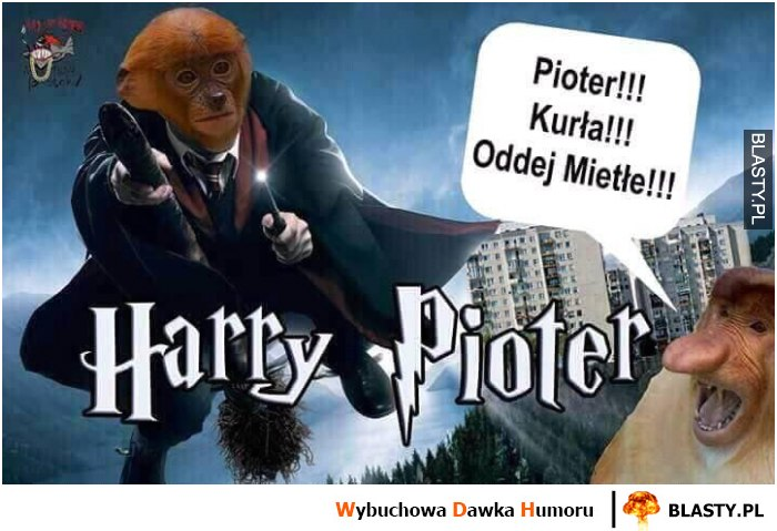 Harry Pioter