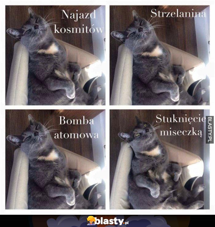 Koteły takie są