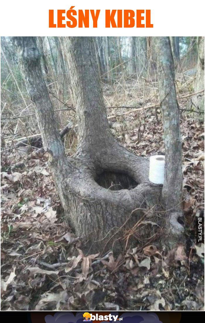 Leśny kibel