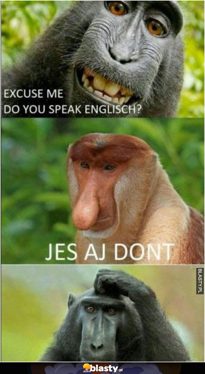 Excuse me do you speak englisch