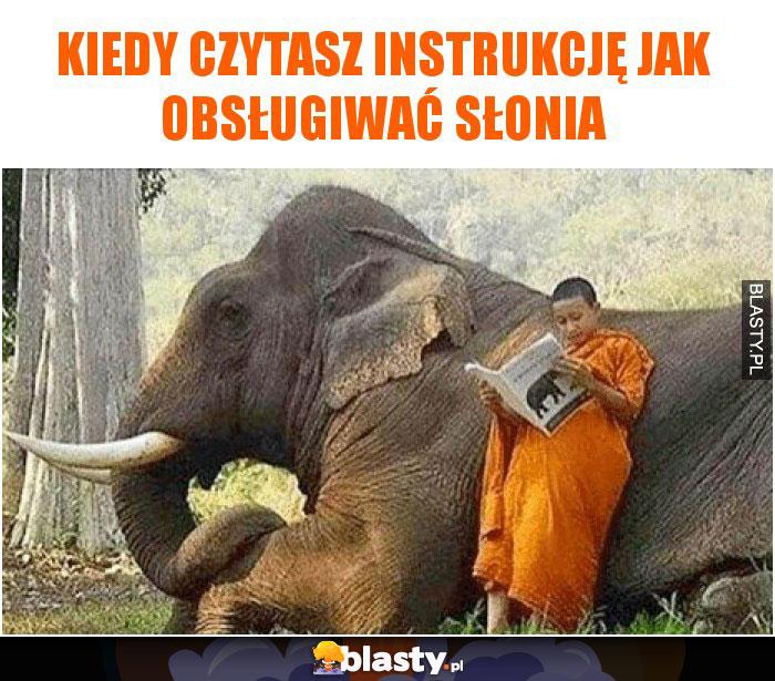 Kiedy czytasz instrukcję jak obsługiwać słonia