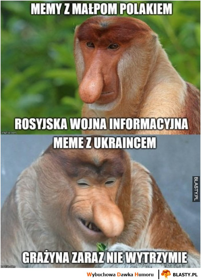 Memy z ukraincem