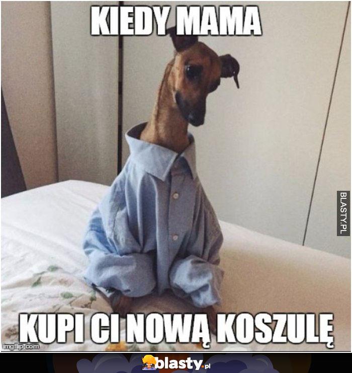 Kiedy mama kupi Ci nową koszulę