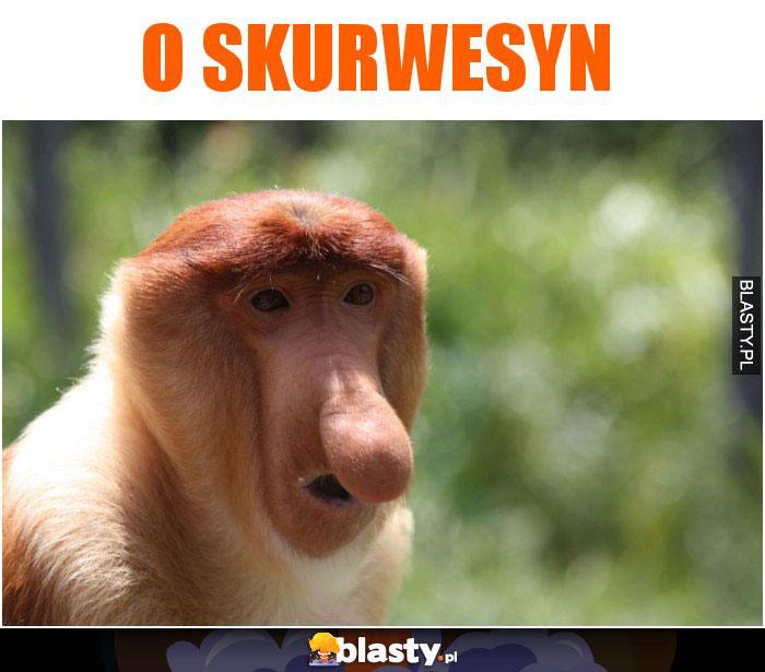 O SKURWESYN