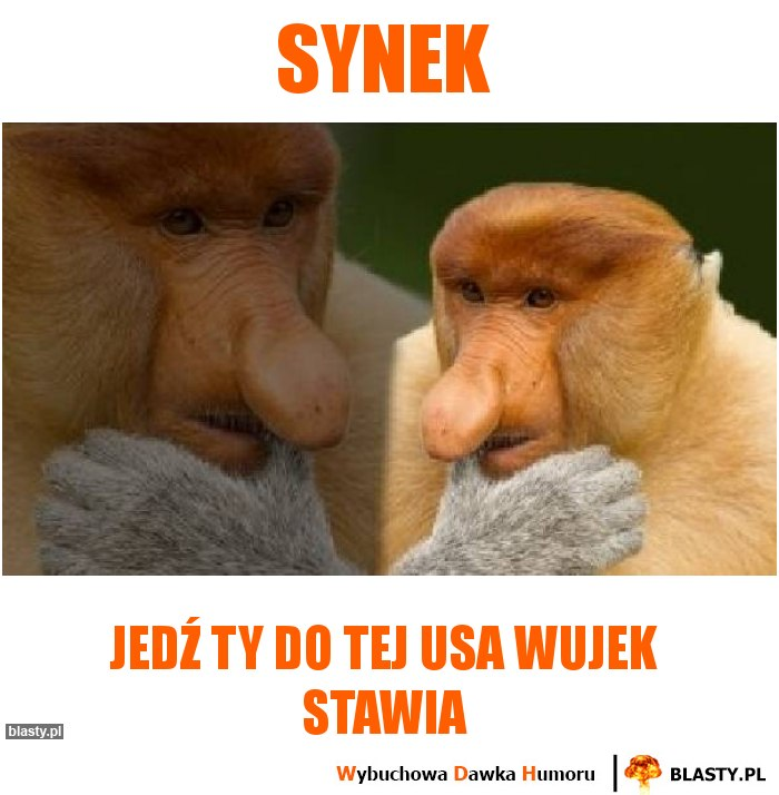 synek