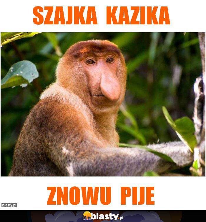 SZajka  Kazika