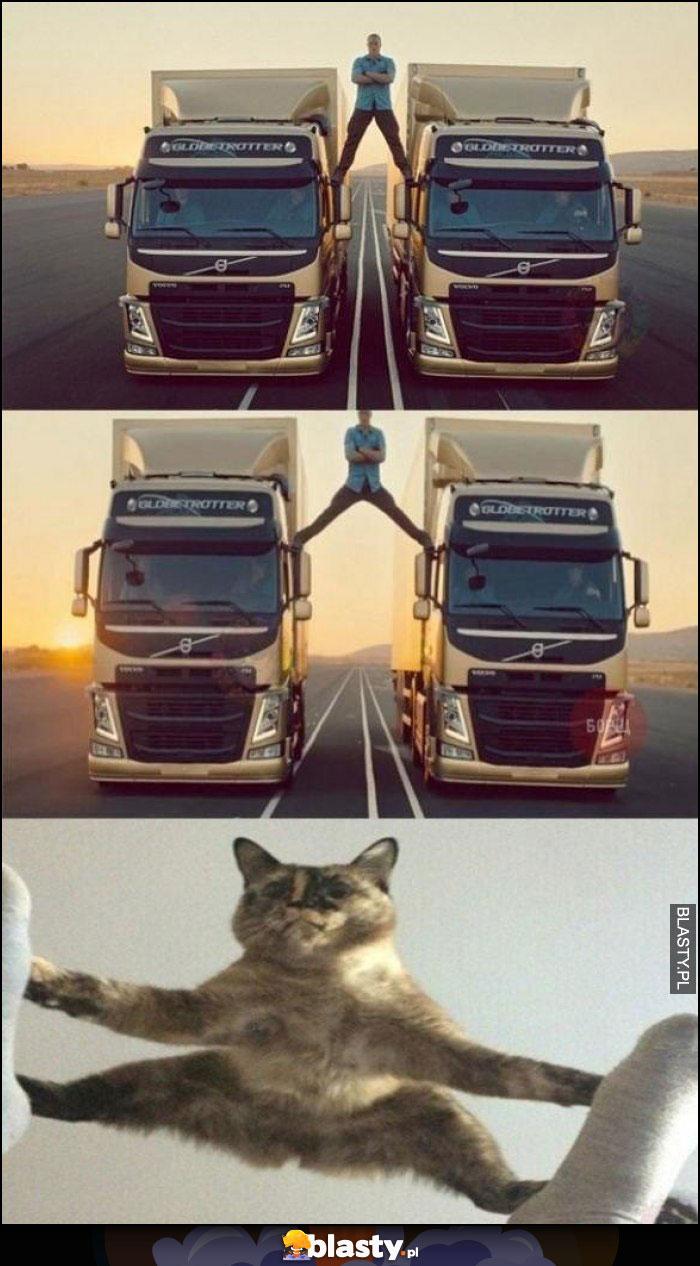 Dobry Kot Memy Gify I śmieszne Obrazki Facebook Tapety