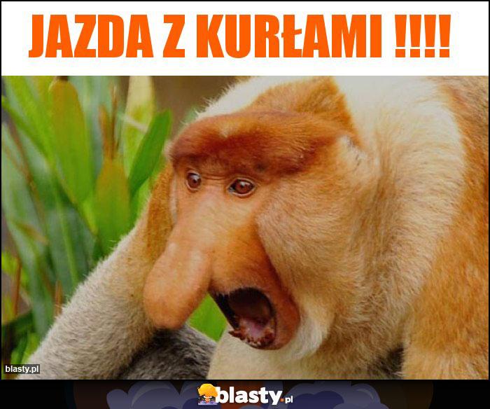 jazda-z-kurlami_2018-06-24_18-49-57.jpg
