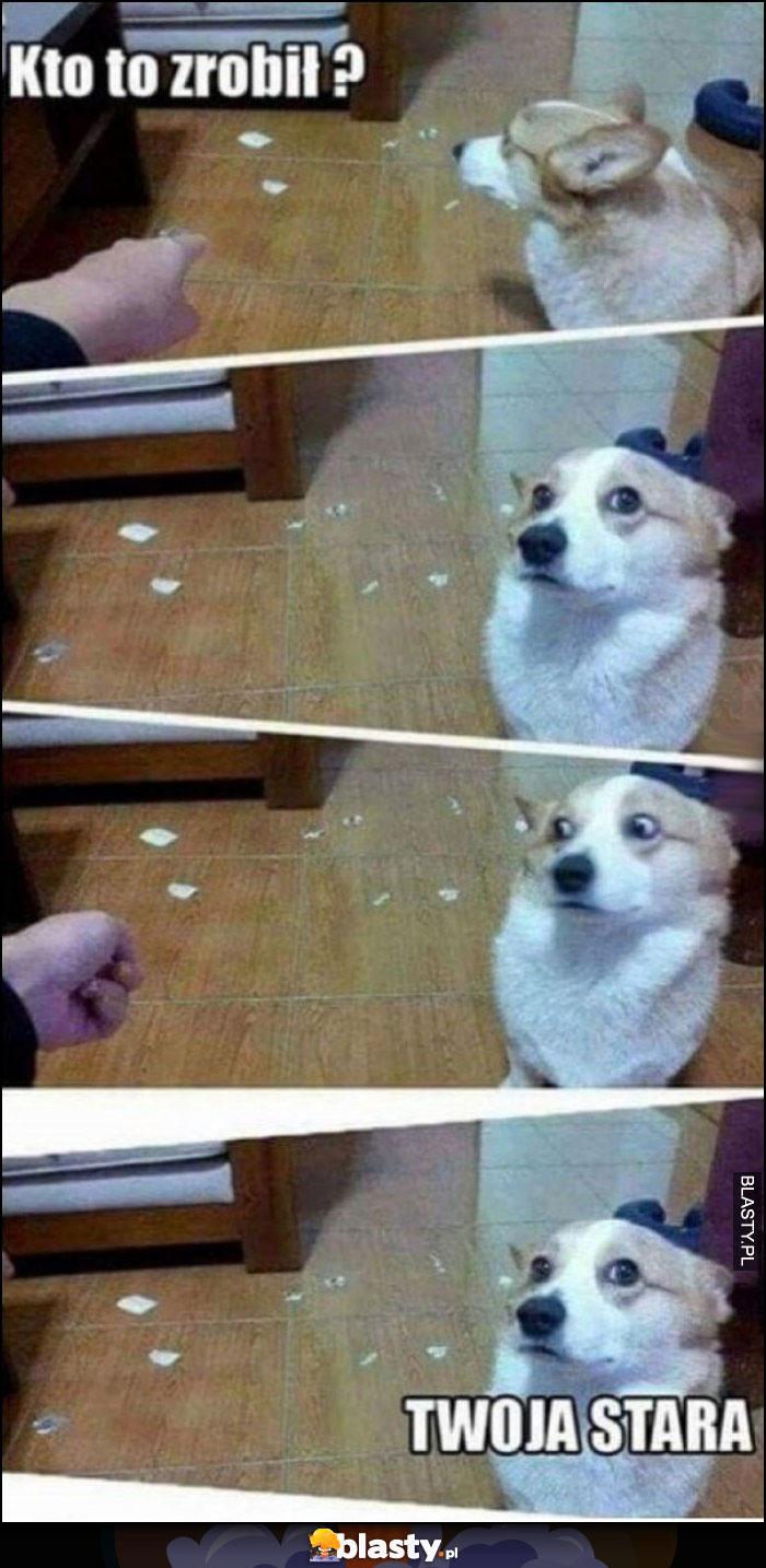 Kto to zrobił?