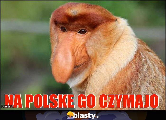 na polske go czymajo