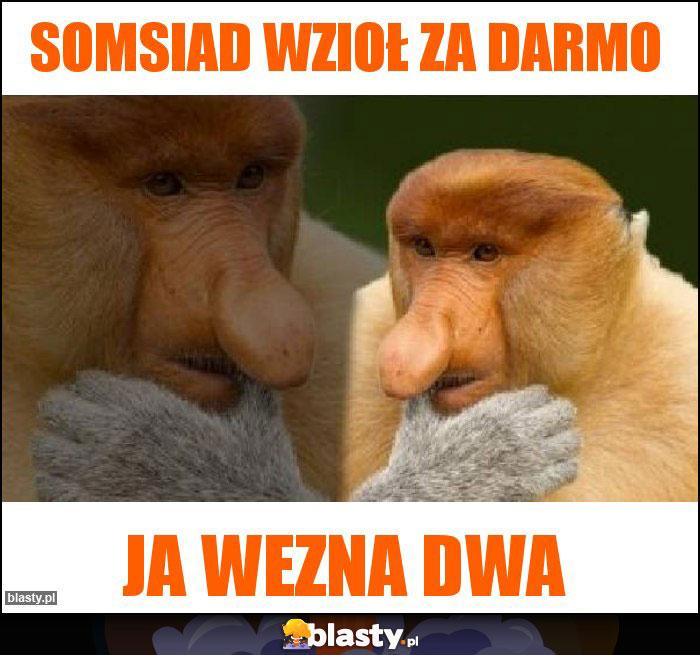 [Obrazek: somsiad-wziol-za-darmo_2018-06-14_12-50-12.jpg]