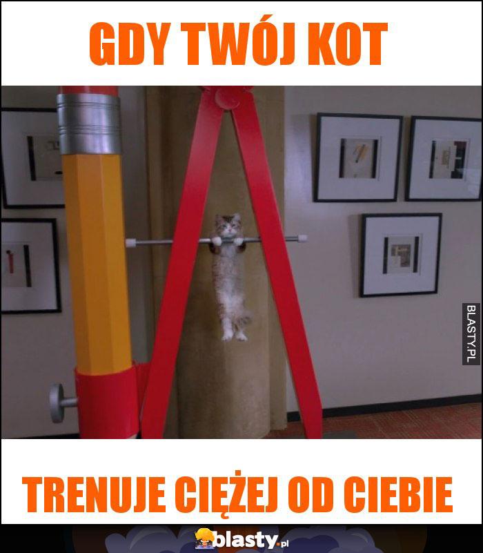 Gdy twój kot