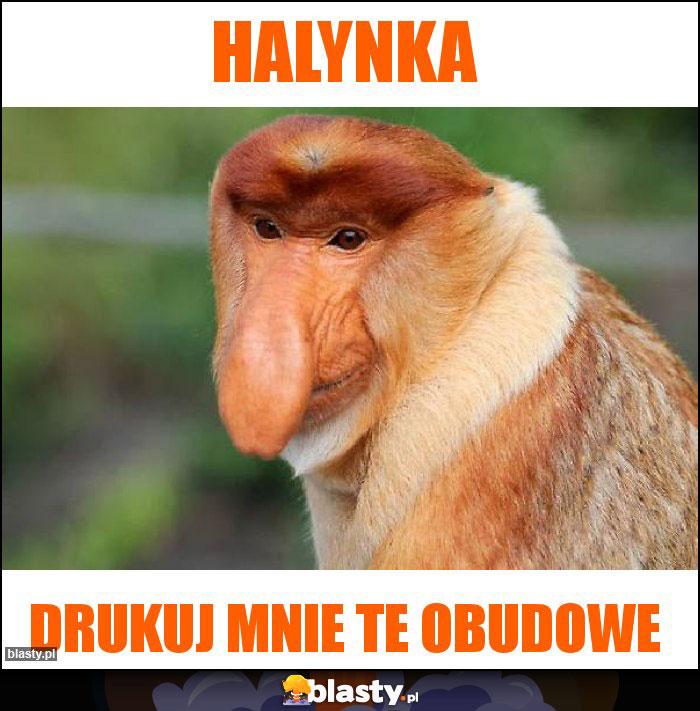 Halynka