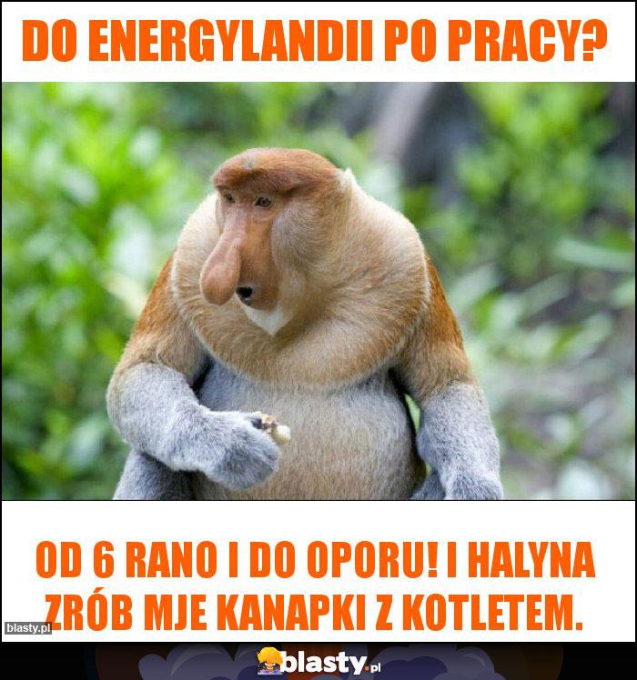 Do Energylandii po pracy?