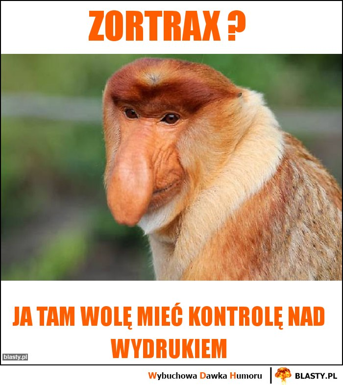 Zortrax ?