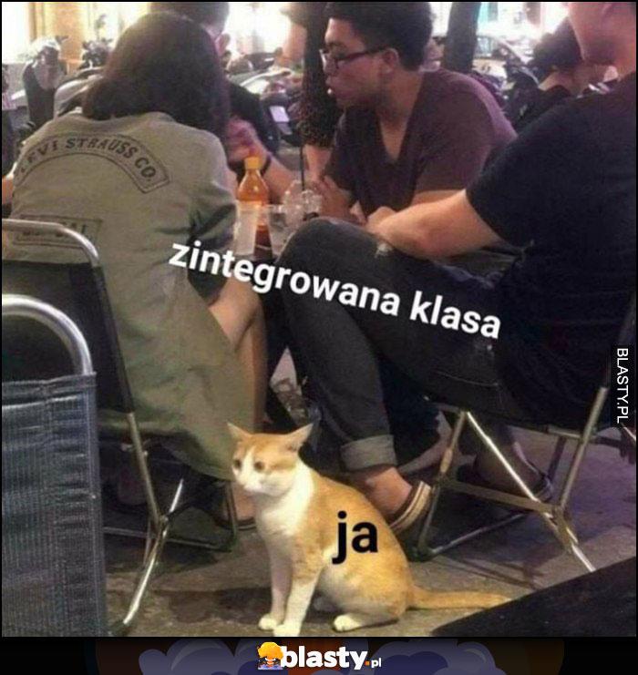 Zintegrowana Klasa I Ja Przestraszony Kot Memy Gify I śmieszne