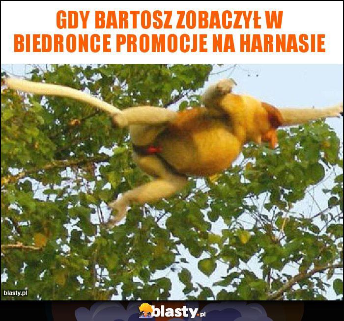 Gdy Bartosz zobaczył w biedronce promocje na harnasie
