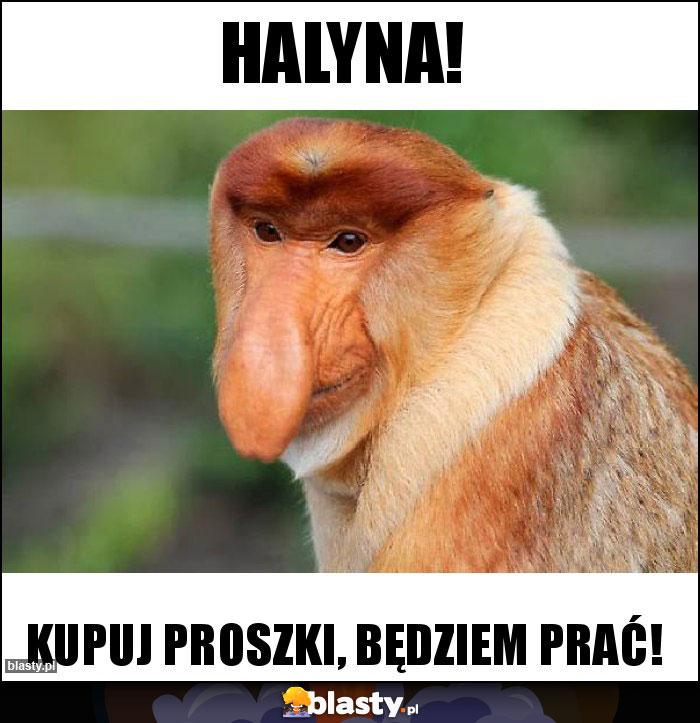 Halyna!
