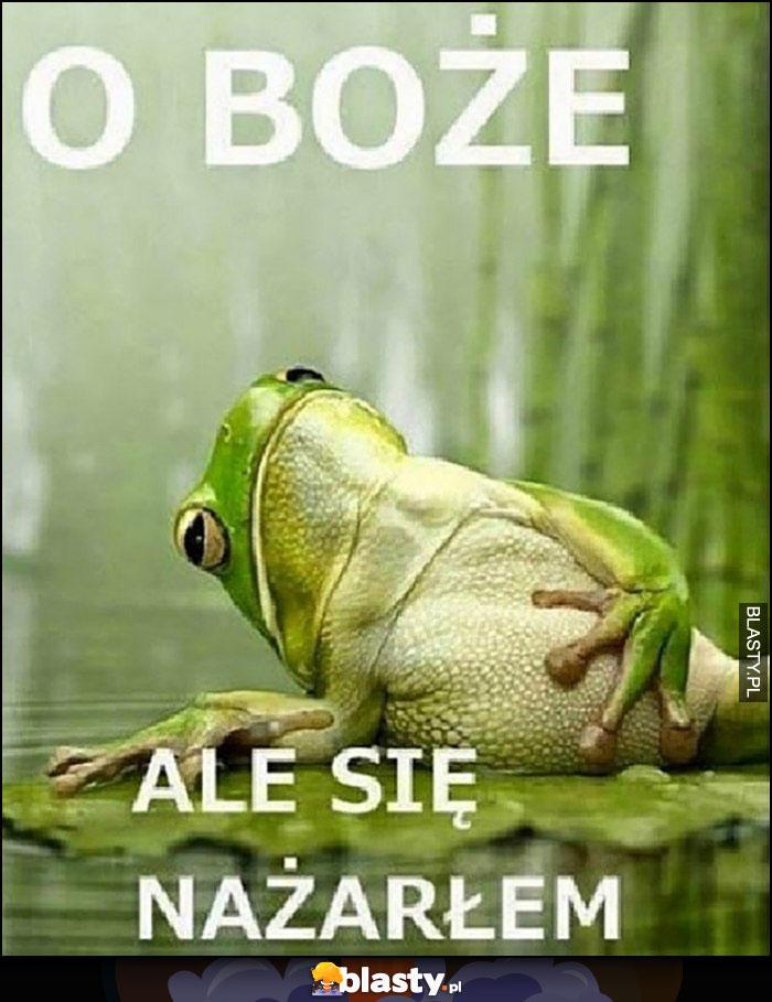 O boże ale się nażarłem żaba