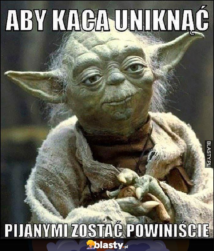 Yoda radzi aby kaca uniknąć pijanym zostać powinniście