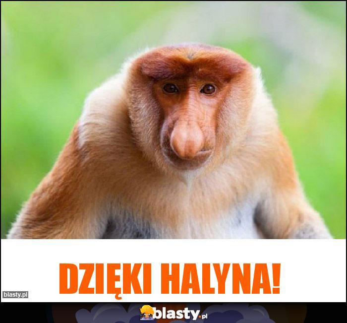 Dzięki Halyna!
