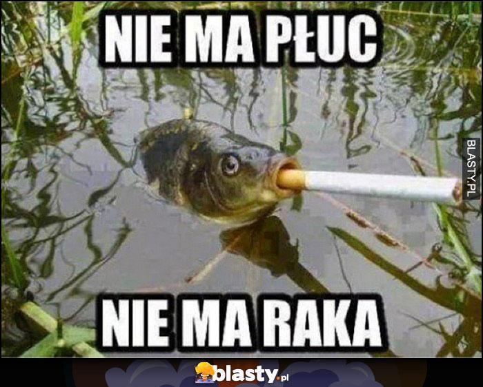 Nie ma płuc, nie ma raka ryba z papierosem