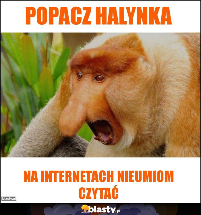 popacz Halynka