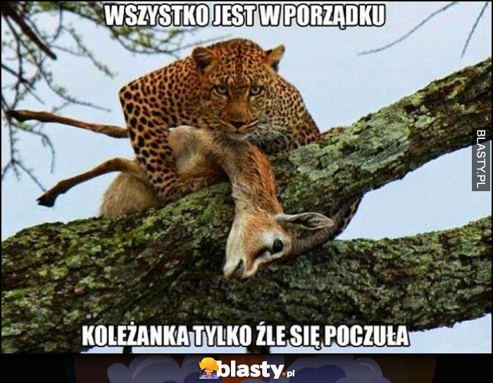 Wszystko jest w porządku koleżanka tylko źle się poczuła gepard sarna antylopa