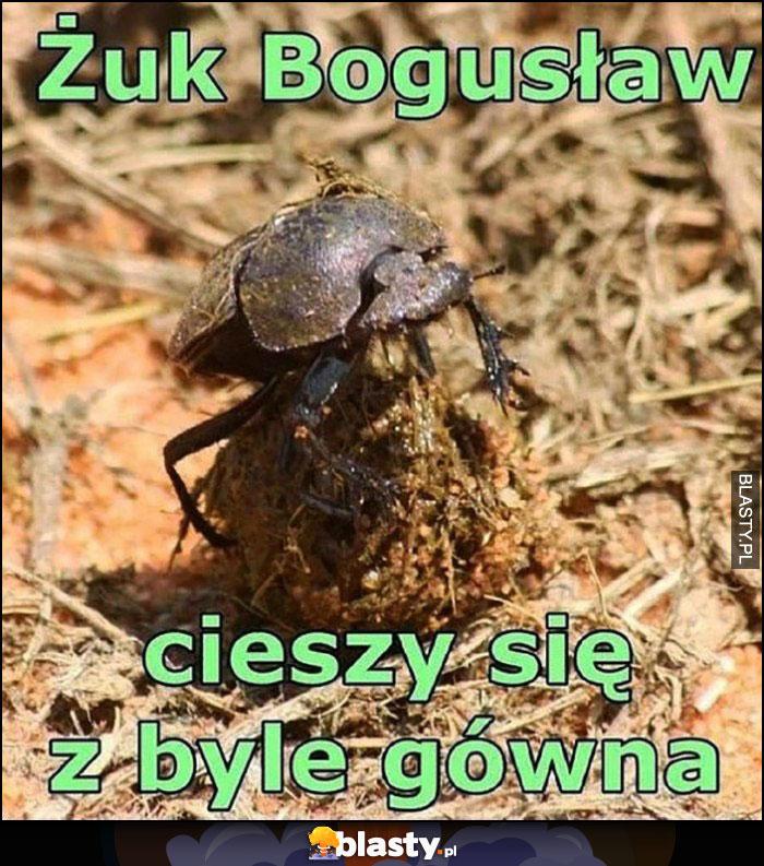 Żuk Bogusław cieszy się z byle gówna